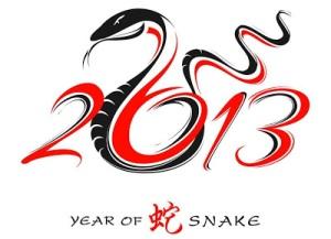 2013 snake year
