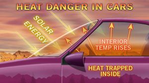 aCarHeat_Danger