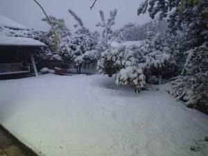 LarryTaylor_JerryGolden_Jerusalem_2013_snow-1