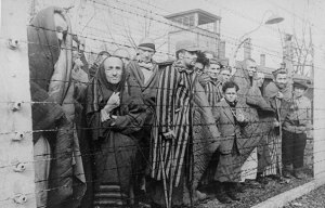 2014_holocaust-photo_rosenberg