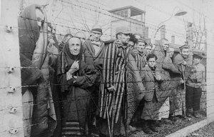 2014_holocaust-photo_rosenberg