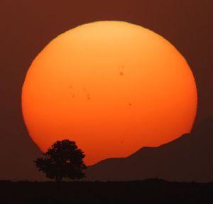 2014_flare_chance_sunset_strip
