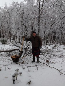 Larry-Taylor-Chopping-Down-Tree-In-Ice-Storm-225x300
